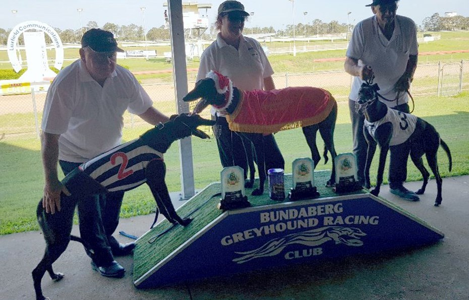 Bundy Greyhounds Xmas Cup 2018